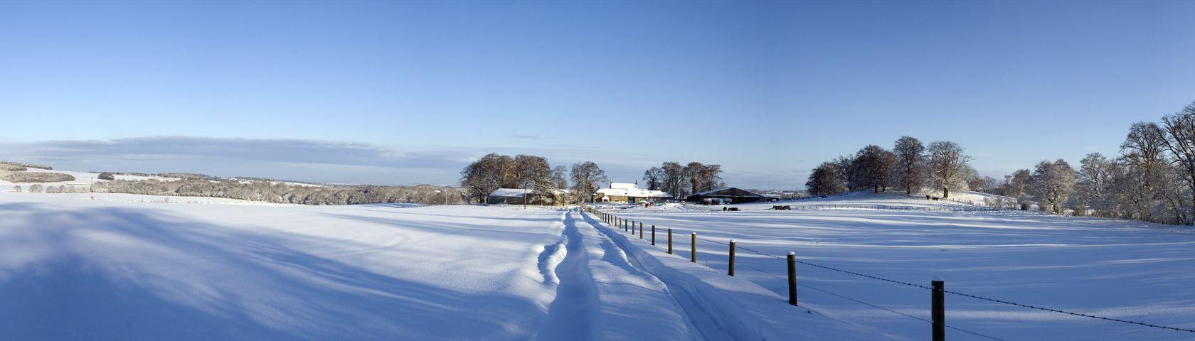 Snowy Rural Scene in Scotland