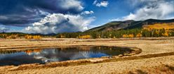 Aspen Wetlands