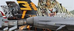 F16 Line-Up