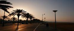 Beach Path at Sunset